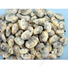 WEI-CHUAN - COOKED BABY CLAM MEAT (14OZ)