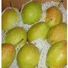 新疆香梨 / 磅