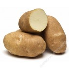 FRESH POTATOES WHITE